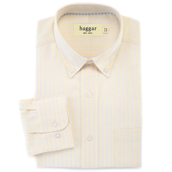 Haggar - Striped Dress Shirt