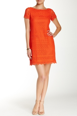 Maggy London - Short Sleeve Lace Shift Dress