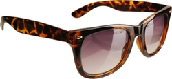 Eye Design - Wayferer Sunglasses
