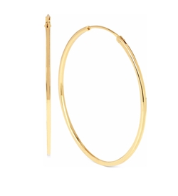 Hint of Gold - Hoop Earrings