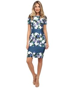 Adrianna Papell  - Printed Scuba Sheath Dress