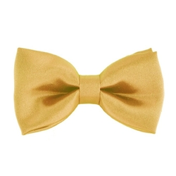 WonderfulDress - Classic Satin Bow Tie