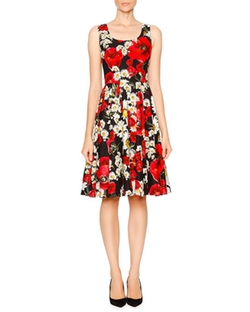 Dolce & Gabbana - Poppy & Daisy Fit-&-Flare Dress