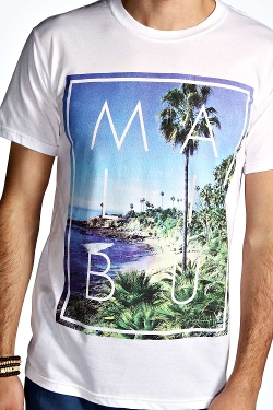 Boohoo - Malibu Beach Printed T Shirt