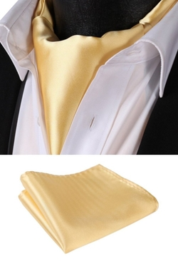 Setsense - Jacquard Woven Self Cravat