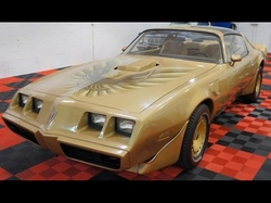 Pontiac - 1981 Firebird Trans Am Coupe