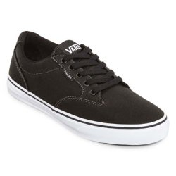 Vans - Winston Mens Skate Shoes