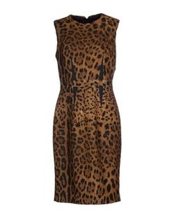 Class Roberto Cavalli - Leopard Knee-Length Dress
