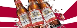 Budweiser - King Of Beers