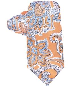 Tasso Elba - Derby Paisley Tie