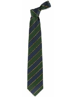 FORZIERI - Navy Blue & Green Bands Woven Silk Tie