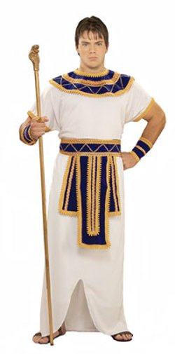 CostumeCraze - Prince Of The Pyramids Costume