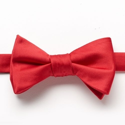 Bow Tie Tuesday  - Solid Satin Pre-Tied Bow Tie