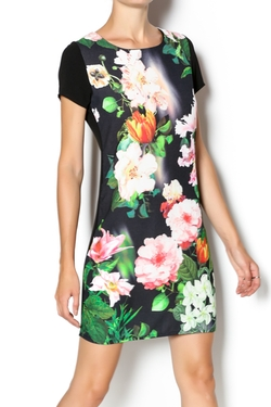 Steezyer - Floral Shift Dress
