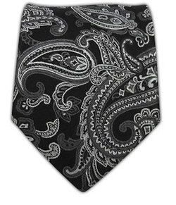 The Tie Bar - Silk Woven Chicago Paisley Tie