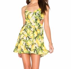 Show Me Your Mumu - Piper Dress