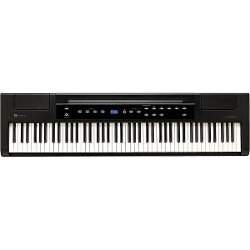 Williams  - Allegro 2 88-Key Hammer Action Digital Piano