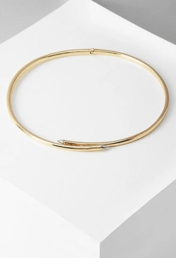 Forever 21 - Collar Choker Necklace