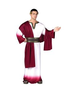 Wonder Costumes - Caesar Men Costume Deluxe