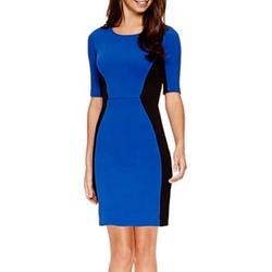 Bisou Bisou - Elbow-Sleeve Colorblock Sheath Dress