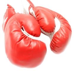 Rex - Boxing Gloves