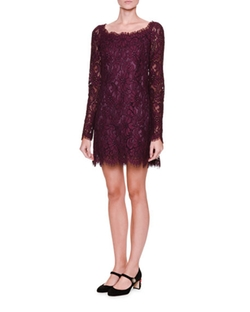 Dolce & Gabbana  - Long-Sleeve Lace Shift Dress