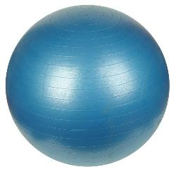 Sunny Health & Fitness  - Anti-Burst Gym Ball