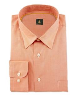 Robert Talbott - Solid Woven Dress Shirt
