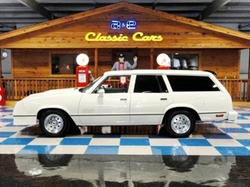 Chevrolet  - 1979 Malibu Wagon