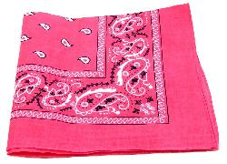 Best Bandanas - New Double Sided Print Paisley Bandana Scarf