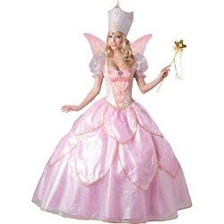 Costume Express - Fairy Godmother Adult Costume
