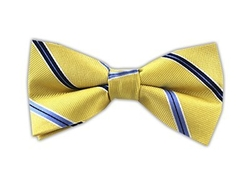 The Tie Bar - Vocal Stripe Bow Tie