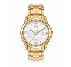Citizen - Eco-Drive Goldtone Watch