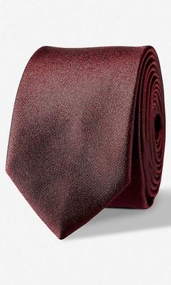 Express - Skinny Silk Tie