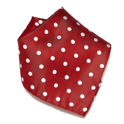 Concitor - Polka Dots Pocket Square