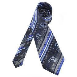 Pensee  - Mens Silk Tie Striped Paisley Necktie