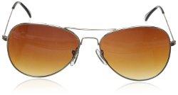 Dickies - Aviator  Sunglasses
