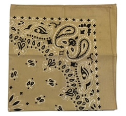 Essma Clothing - Military Army Trainmen Paisley Bandana