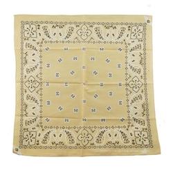 Owm Handkerchiefs - Paisley Bandana