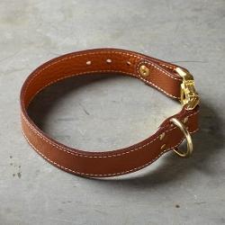 Willams-Sonama - Auburn Seneca Dog Collar