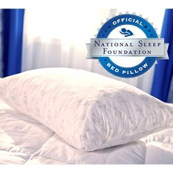 My Pillow, Inc. - Premium Standard/Queen Bed Pillow