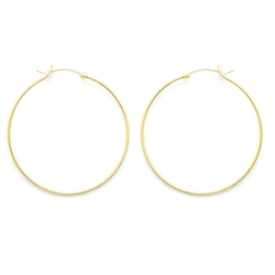 Alex and Ani - Large Perfect Hoops Earrings
