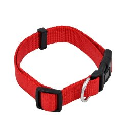 Woof Meow - Nylon Adjustable Buckle Dog Collar
