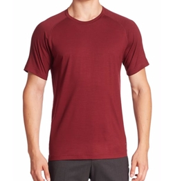 Z Zegna  - Techmerino Tee