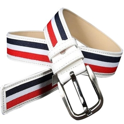 Amybria - Striped Pin Buckle Canvas Belt