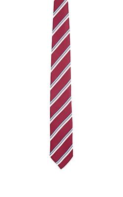 Barneys New York - Striped Necktie