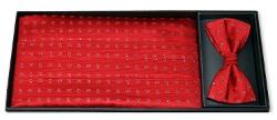 Ike Behar  - Silk Bow Tie Cummerbund Set