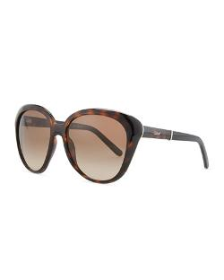 Chloe   - Oversized Cat-Eye Sunglasses