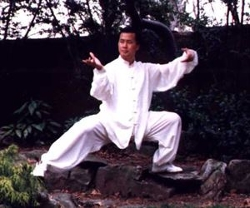TotalMartialArtsSupplies.com - Microfiber Custom Tai Chi Uniform