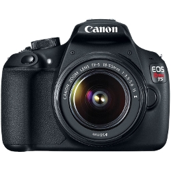 Canon  - EOS Rebel Digital SLR Camera